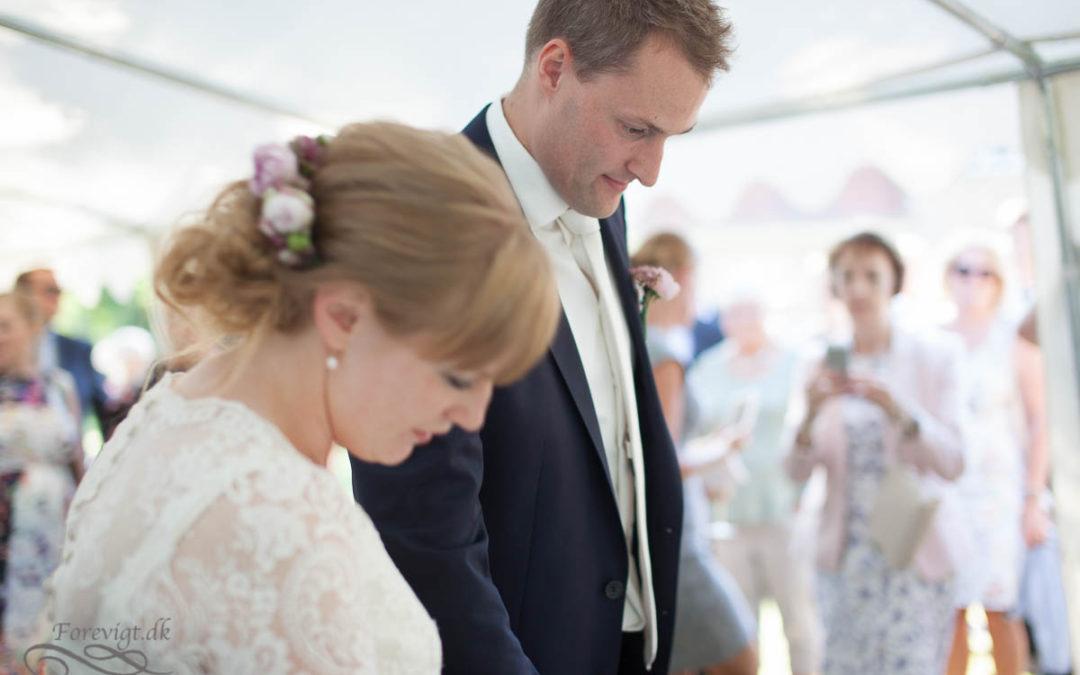 Lesley & Robin's Wedding