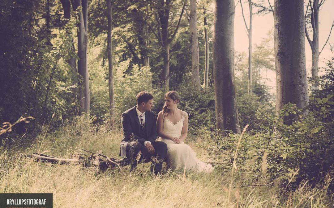 Planlægning Af Et Vidunderlig Bryllup